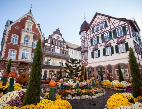 Lahr – Die blühende Stadt zwischen Schwarzwald und Rhein